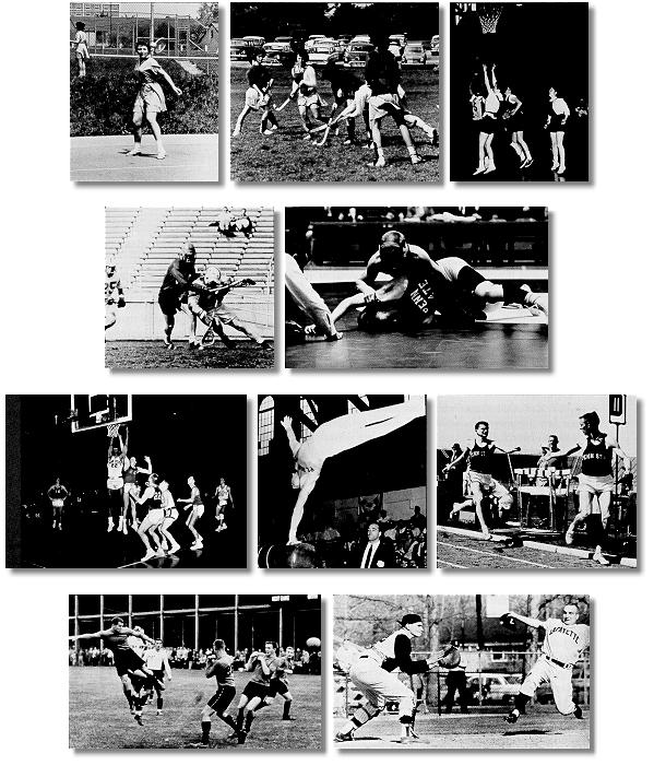 Collage of men's and women's athletics