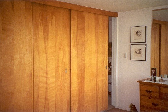 Delicieux Sliding Wood Closet Doors Gallery Doors Design Modern
