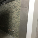 April 2019 - Pattee Library Interior Courtyard Ceramic Tile