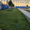 July 2019 - West Pattee Terrace Sod Installation