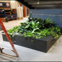 July 2019 -  Pattee Library Interior Courtyard Planter