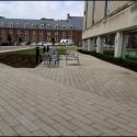August 2019 - Dr. Keiko Miwa Ross Garden Terrace