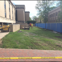 May 2018 - West Pattee Ground Floor Terrace Tree Removal