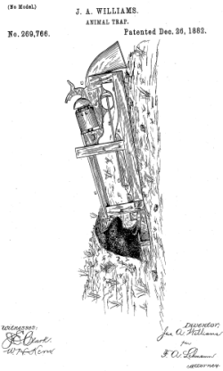 Utility Patent example picture.